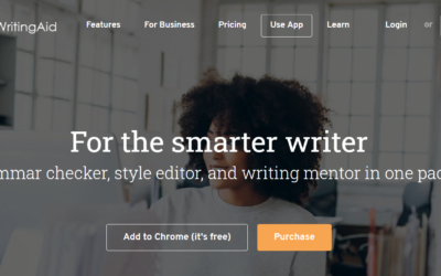 Is ProWritingAid Ideal for You? A Review for 2020